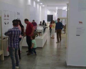 Conferencia sobre Legislación de Museos de Argentina y el NEA